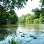 Hartsholme County park